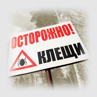 http://dezinfserp.ru/img/img1.jpg